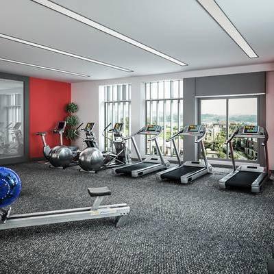 健身房, 运动器材, 跑步机, 绿植, 现代健身房