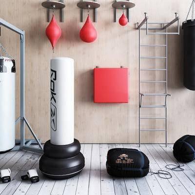 拳击沙包, 拳击设备, 拳击套, 健身器材, 现代