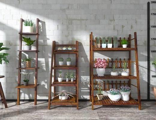 现代梯形木质花架盆栽绿植组, 现代, 花架, 盆栽, 植物, 花卉