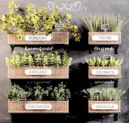 墙饰绿植, 摆件组合, 竹篮盆景, 花篮, 北欧