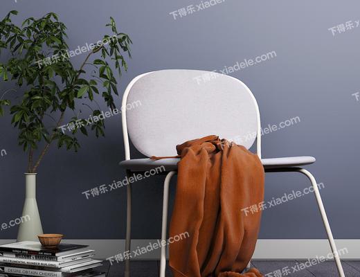花瓶, 书籍, 椅子, 休闲椅, 北欧椅子, 现代椅子