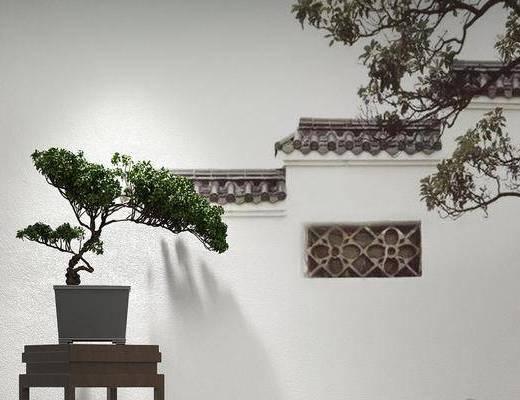 玄关柜, 盆栽植物