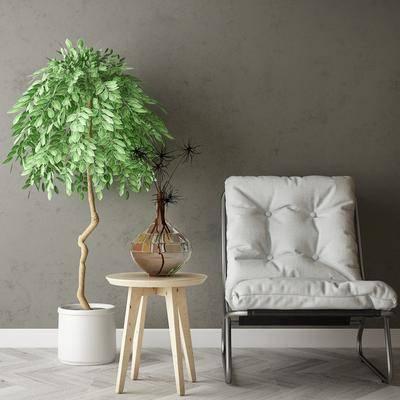 单椅, 边几, 盆栽植物