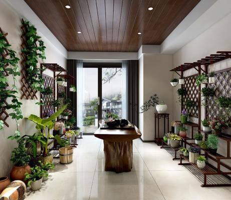 花室, 花园庭院, 装饰架, 植物绿植, 盆栽组合, 中式