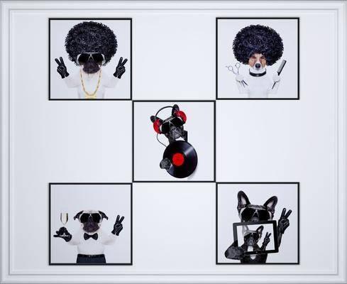 动物画, 装饰画, 挂画, 现代装饰画, 现代