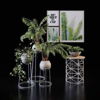 綠植盆栽, 花幾, 植物掛畫組合, 現代