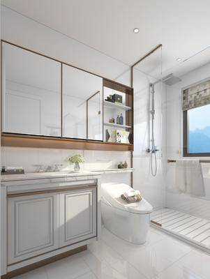 衛生間, 馬桶, 花灑, 洗手臺, 現代