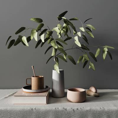 摆件组合, 盆栽植物