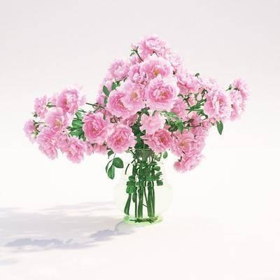 花瓶, 花卉, 牡丹花, 现代