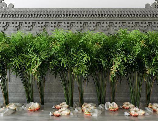 植物, 树木, 石头, 现代