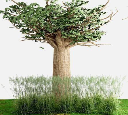 現代, 樹木, 綠植
