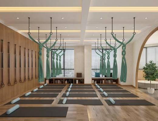 瑜伽教室, 瑜伽垫, 盆栽, 书柜, 书籍, 装饰柜, 现代