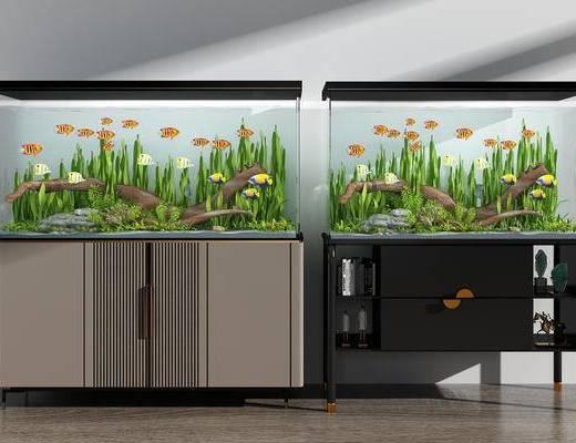 鱼缸, 水族馆