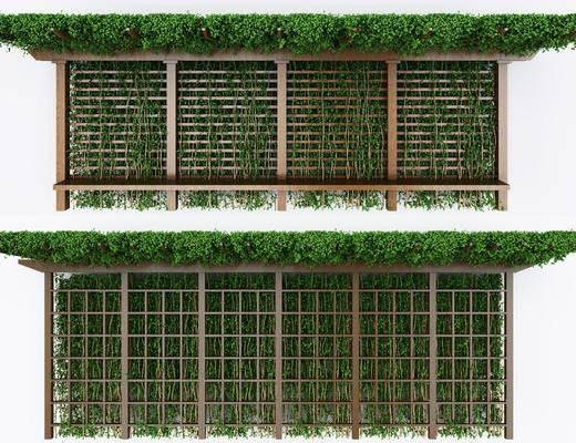 藤蔓爬山虎, 植物墙, 花架组合, 绿枝架, 现代