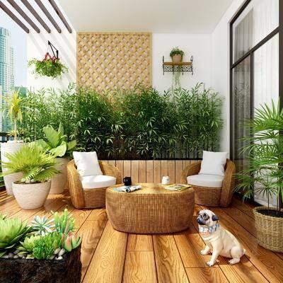 阳台露台, 单人沙发, 茶几, 宠物狗, 竹子, 盆栽, 绿植植物, 现代