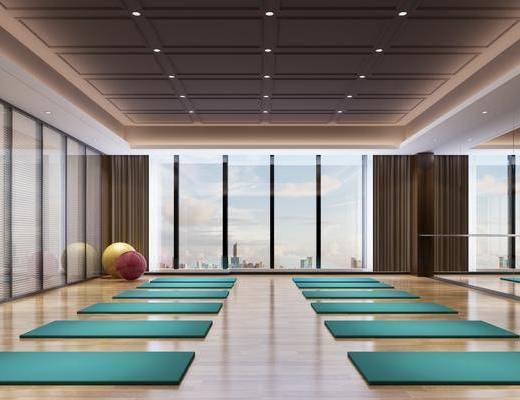 健身室, 瑜伽室, 瑜伽垫, 现代