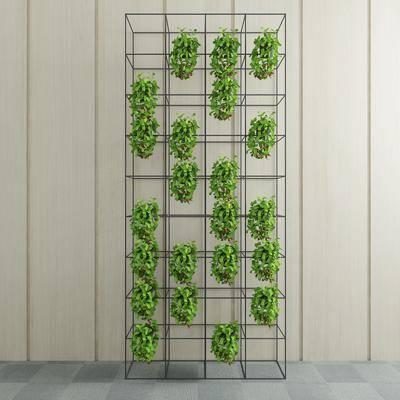 绿植盆栽, 装饰架, 植物, 现代
