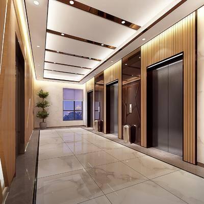 电梯, 电梯厅, 走廊, 过道, 植物, 盆栽, 办公区, 现代