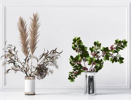 现代植物花瓶盆栽组合