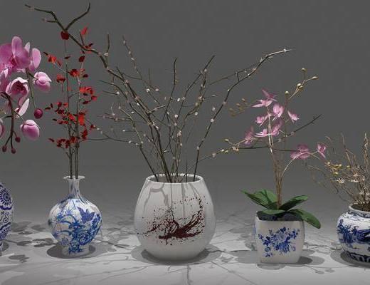 花瓶, 花卉, 植物