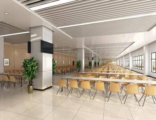 食堂, 现代食堂, 桌椅组合, 植物, 盆栽, 取餐区, 现代