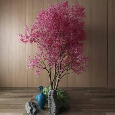 植物, 景觀小品, 裝飾