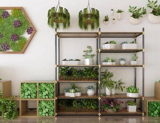 植物盆栽, 装饰架, 装饰品, 陈设品, 现代