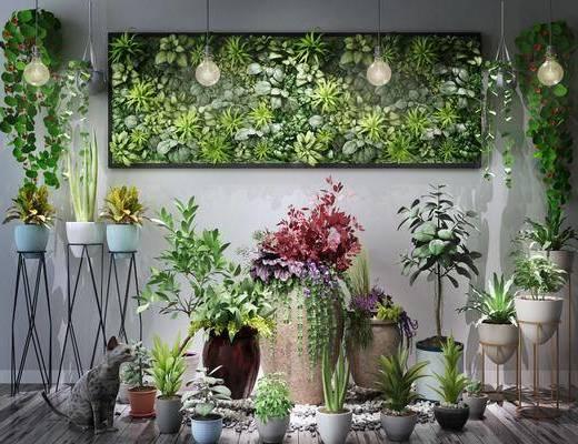 绿植组合, 盆栽, 装饰架, 花卉, 植物墙, 吊灯, 植物, 现代