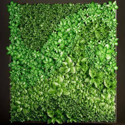 植物背景墙, 绿植, 植物墙, 植物, 现代