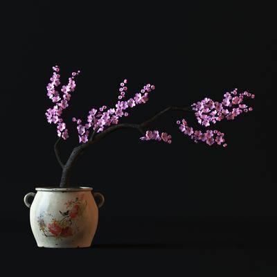 花盆, 樱花, 花卉, 现代