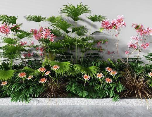 綠植花池, 灌木, 綠植植物, 現代