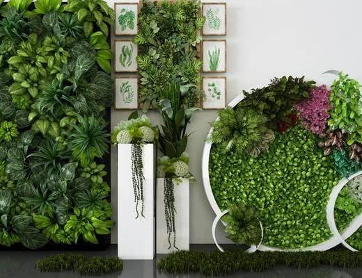 植物墙, 绿植植物, 植物画, 装饰画, 挂画, 现代