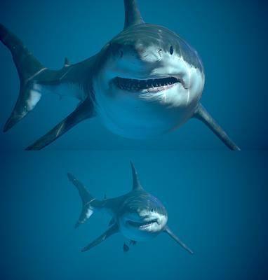大白鲨, 现代