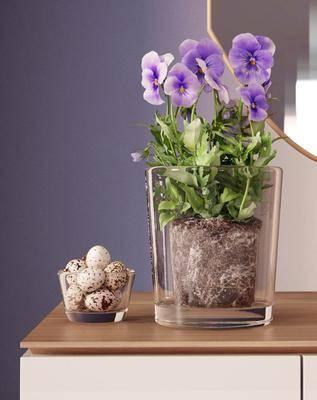 花瓶, 花卉, 花, 鹌鹑蛋, 现代