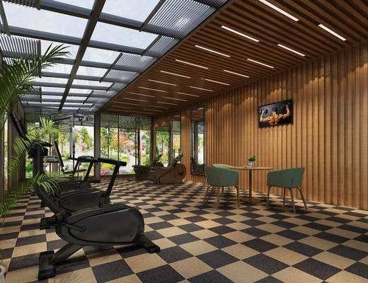 玻璃房, 健身房, 健身单车, 健身器材, 盆栽, 绿植植物, 桌子, 单人椅, 现代