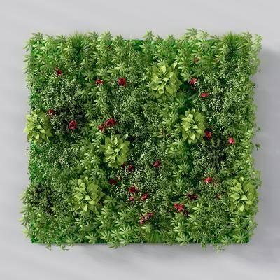 植物墙, 多肉植物墙, 绿植植物, 现代