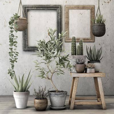 盆栽, 植物, 相框, 边几, 北欧