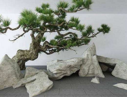 景观小品, 园艺小品, 石头, 树木, 中式