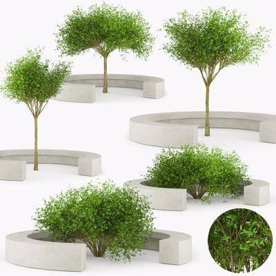 树木, 绿植植物, 现代