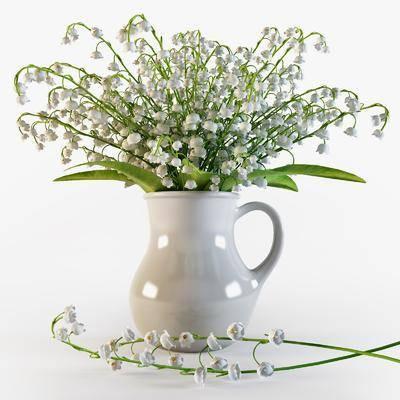 花瓶, 花卉, 花, 现代