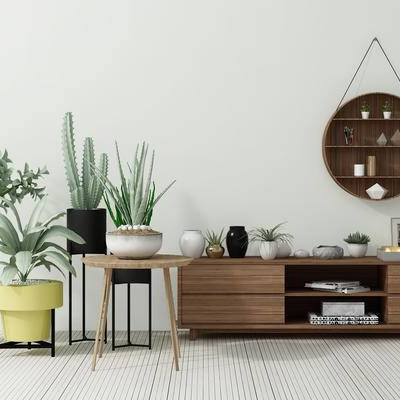 电视柜, 茶几, 盆栽, 植物, 绿植, 摆设, 现代
