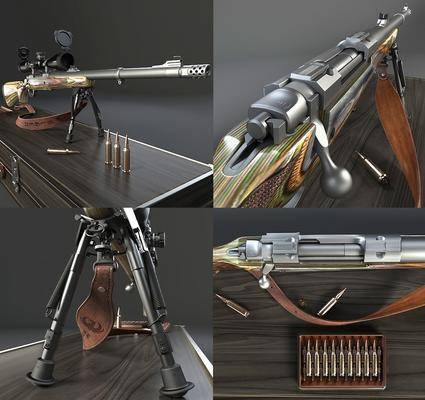 武器, 狙击枪