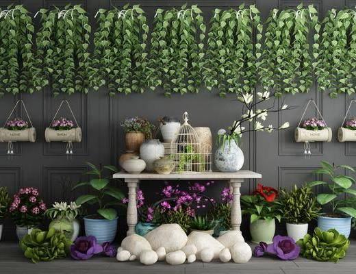 现代绿植, 绿植, 盆栽, 园艺小品