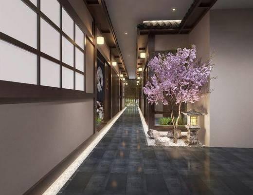 酒店过道, 过道, 走廊, 樱花树