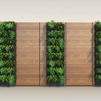 现代植物墙, 现代, 植物墙, 植物