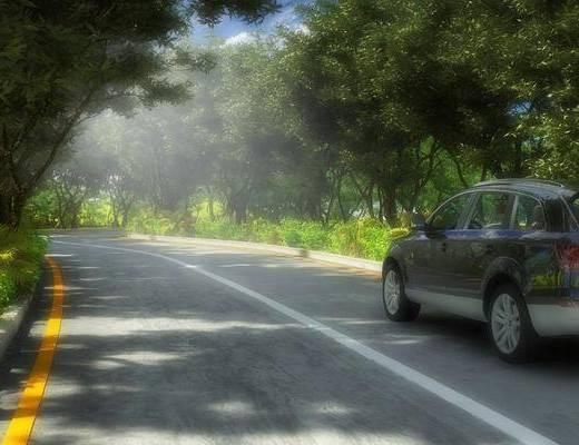 道路马路, 林荫大道, 树林跑道, 植物, 中式, 现代