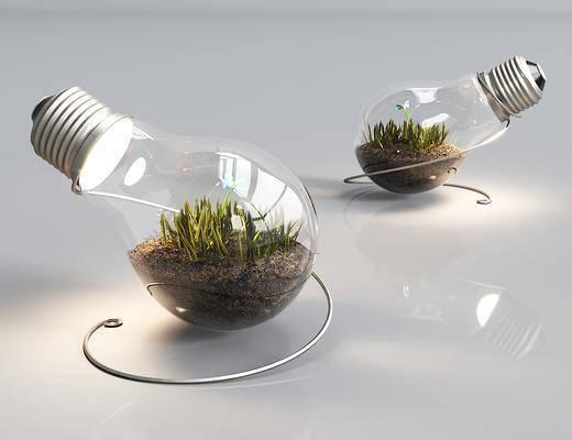 台灯, 盆栽, 绿植
