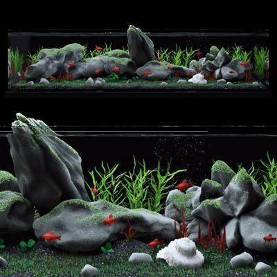 水族鱼缸, 鱼缸水族, 现代