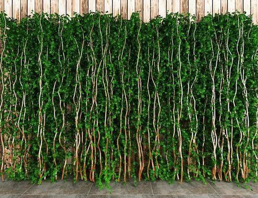 植物墙, 绿植, 现代