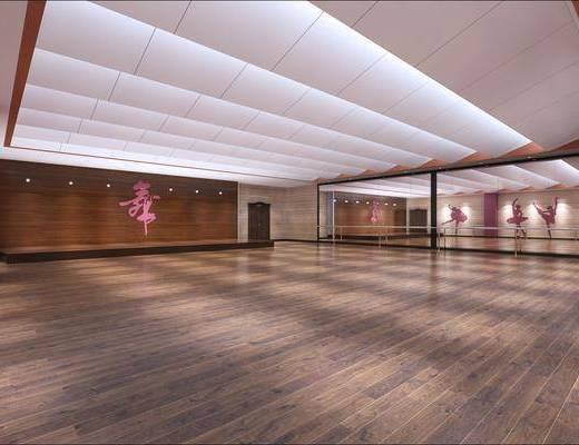 舞蹈室, 健身室, 现代